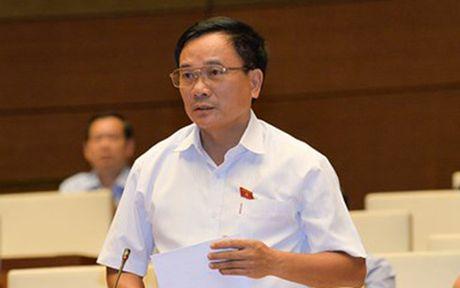 Dai bieu Quoc hoi: Phai tay chay nhung du an 'co mui' loi ich nhom - Anh 2