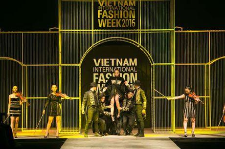 Thanh Hang mang 50 luong vang rong len san catwalk - Anh 7