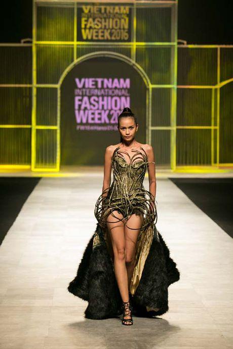 Thanh Hang mang 50 luong vang rong len san catwalk - Anh 8