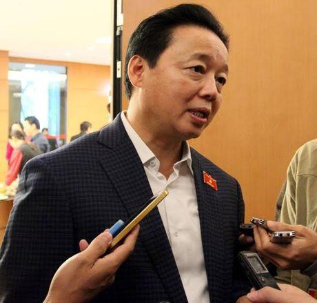Bo truong TN&MT: Ban can su Dang da kiem diem xung quanh vu Formosa - Anh 1