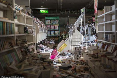 Tham nhap khu vuc tham hoa hat nhan Fukushima sau 5 nam - Anh 1