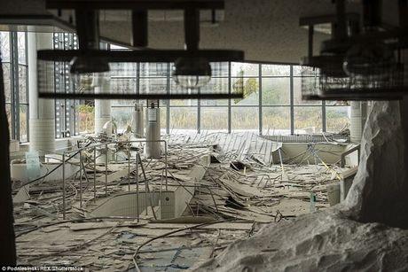 Tham nhap khu vuc tham hoa hat nhan Fukushima sau 5 nam - Anh 3