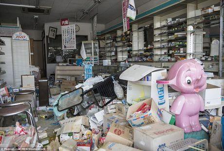 Tham nhap khu vuc tham hoa hat nhan Fukushima sau 5 nam - Anh 5
