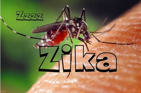 Phat hien 20 truong hop nhiem virus Zika tai TP HCM - Anh 1