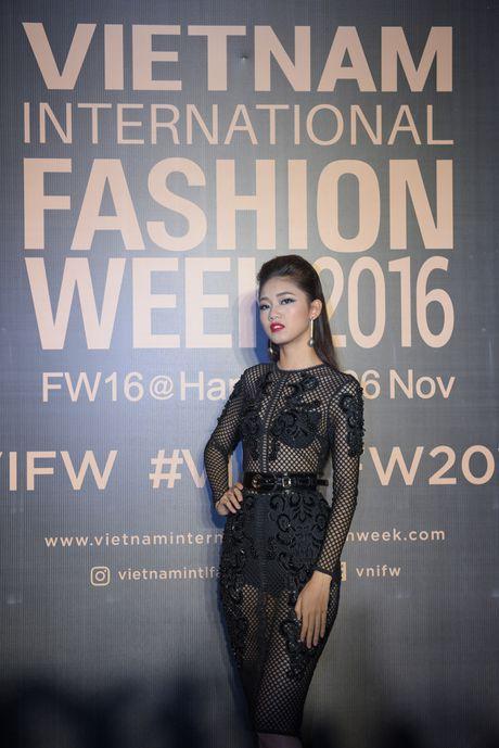 Rung sao Viet hoi tu long lay tren tham do Vietnam International Fashion Week 2016 - Anh 5
