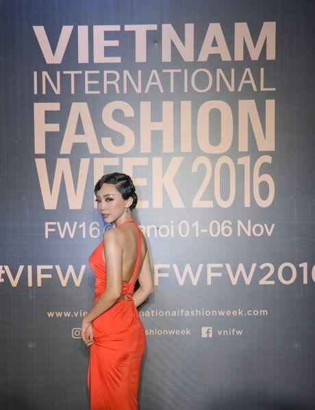 Rung sao Viet hoi tu long lay tren tham do Vietnam International Fashion Week 2016 - Anh 9
