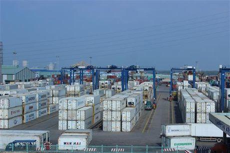 Khoi to vu nhap khau 6 container thit trau gian lan thue lon - Anh 1