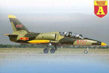 Suc manh cua chien dau co L-39 Viet Nam - Anh 1