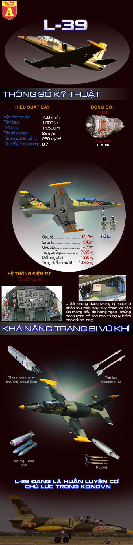 Suc manh cua chien dau co L-39 Viet Nam - Anh 2
