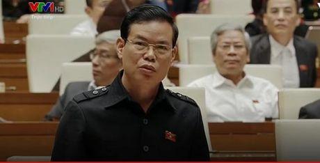 Dai bieu Trieu Tai Vinh: Nong san Viet bi thuong lai Trung Quoc chen ep - Anh 1