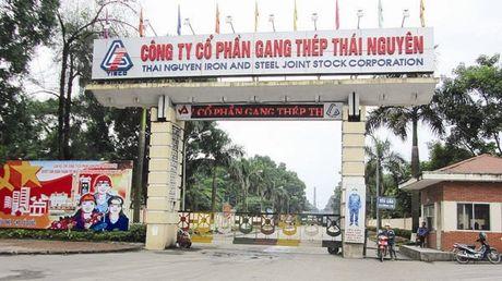 Bo Cong Thuong giai trinh ve nam du an ngan ti gay thua lo - Anh 1