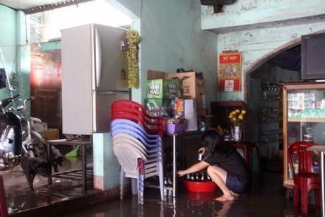 Binh Dinh: Khong co chuyen ho Dinh Binh xa lu - Anh 13