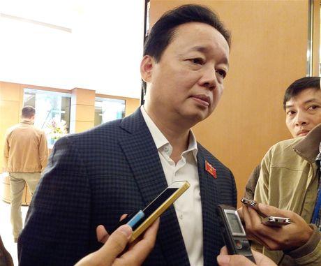 Bo truong TN&MT: Viec xu ly 'hau Formosa' phai dung quy trinh - Anh 1