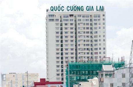 Kinh doanh duoi gia von, Quoc Cuong Gia Lai van lai 32 ty - Anh 1