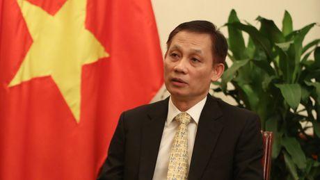 Viet Nam trung cu thanh vien Uy ban Luat phap quoc te - Anh 1