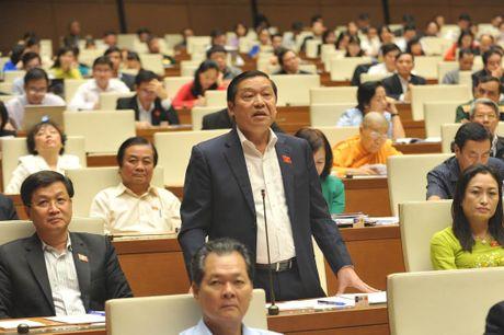 Chu tich Hoi NDVN Lai Xuan Mon: Xay dung NTM chi chu y den 'co the' - Anh 1