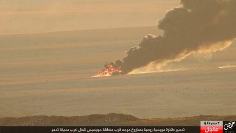 Khoanh khac thot tim truc thang Mi-35M Nga bi ban o Syria - Anh 5