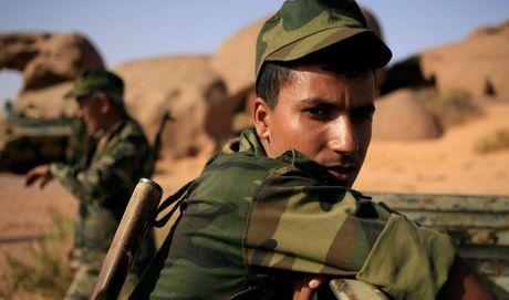 Chum anh tranh chap lanh tho o Tay Sahara - Anh 15