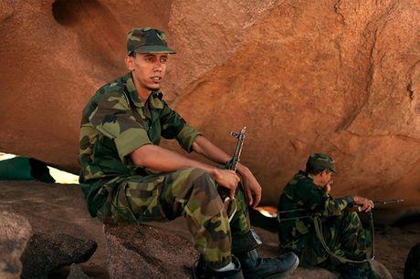 Chum anh tranh chap lanh tho o Tay Sahara - Anh 2