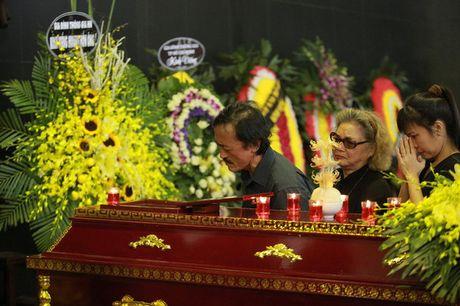 Roi nuoc mat voi hinh anh trong dam tang Pham Bang - Anh 10