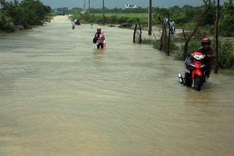 Ninh Thuan van dang mua lon, du bao lu se du doi - Anh 1