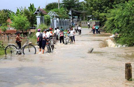 Ninh Thuan van dang mua lon, du bao lu se du doi - Anh 2