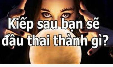 Kiep sau cua ban se nhu the nao - Anh 1