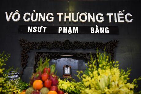 Nghe si Ha Noi dau buon den vieng NSUT Pham Bang - Anh 1