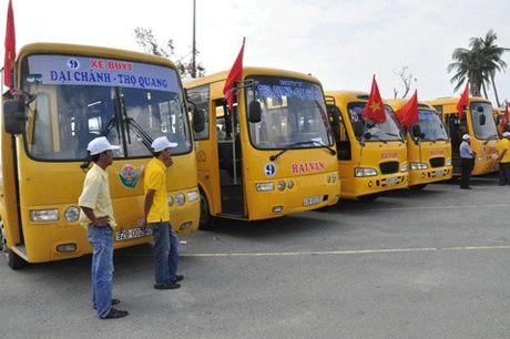 Da Nang bo tri 5 tuyen xe bus tro gia mien phi cho nguoi dan - Anh 1