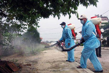 TP HCM: Phat hien tren 20 ca nhiem virus Zika, trong do co 4 ba bau mac moi - Anh 1