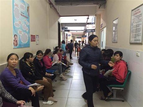 Thai phu khong nen chu quan voi vi rut Zika - Anh 1