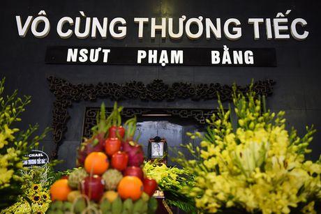 Nghen ngao nuoc mat tien dua 'bo' Pham Bang - Anh 1