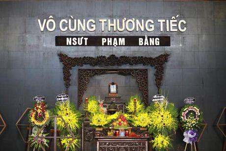 Le tang NSUT Pham Bang: Nhieu nghe si bat khoc trong le vieng - Anh 1
