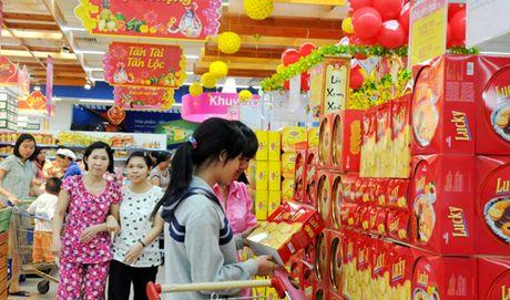 17.000 ty dong chuan bi hang hoa cho Tet Dinh Dau tai TP HCM - Anh 1