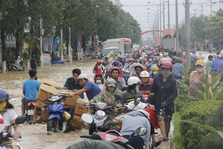 Nha Trang ngap nang khu vuc ngoai o - Anh 1