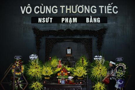 ANH: Dong nguoi tien dua NSUT Pham Bang - Anh 1