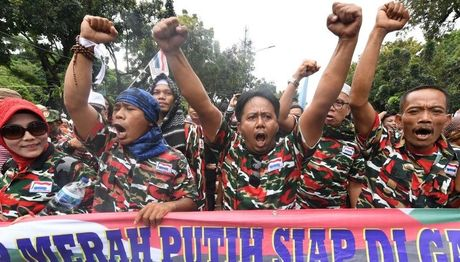 Bieu tinh du doi, doi thi truong Jakarta tu chuc - Anh 2