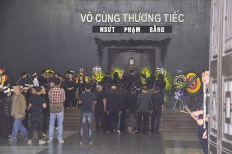 Dong dao sao Viet toi vieng nghe si Pham Bang - Anh 10