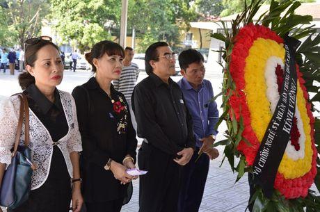 Dong dao sao Viet toi vieng nghe si Pham Bang - Anh 3