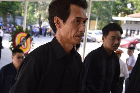 Dong dao sao Viet toi vieng nghe si Pham Bang - Anh 6