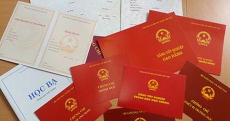 Truong Ban To chuc Thanh uy Vi Thanh bi giang xuong lam nhan vien - Anh 1