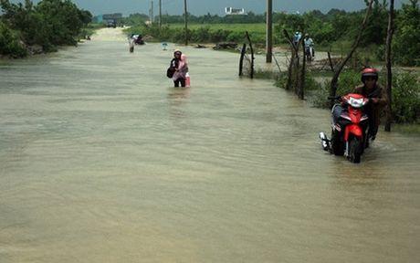 Ung pho voi ap thap nhiet doi tai khu vuc Ninh Thuan - Binh Thuan - Anh 1