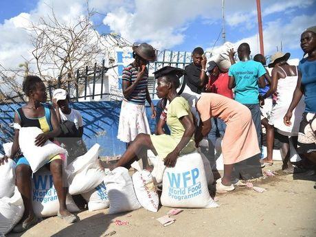 Unicef: 600.000 tre em tai Haiti dang can vien tro nhan dao - Anh 1