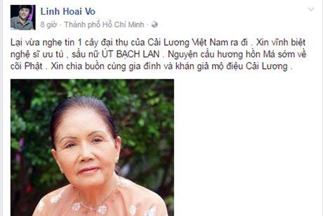 Nghe si Viet tiec thuong 'sau nu' Ut Bach Lan qua doi - Anh 2