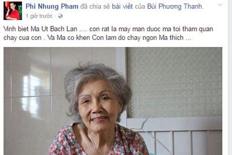 Nghe si Viet tiec thuong 'sau nu' Ut Bach Lan qua doi - Anh 3