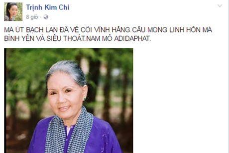 Nghe si Viet tiec thuong 'sau nu' Ut Bach Lan qua doi - Anh 7