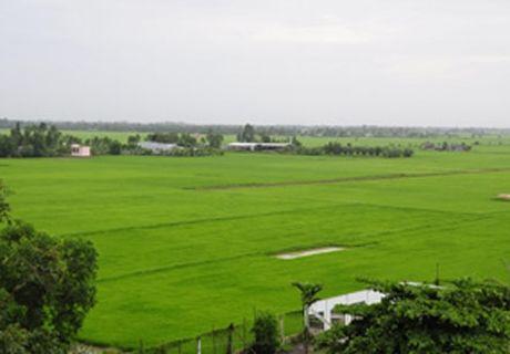Chuyen muc dich su dung dat tai tinh Ninh Binh - Anh 1