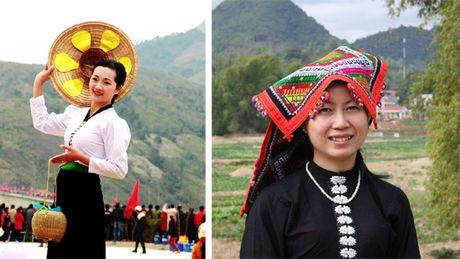 Bao ton dieu xoe co - Anh 2