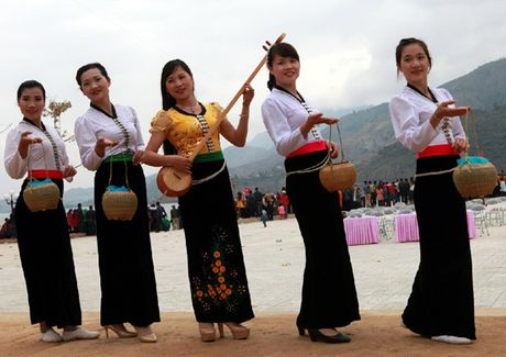 Bao ton dieu xoe co - Anh 5