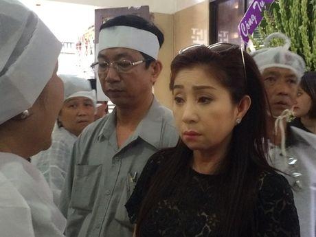 Dong dao nghe si nghen ngao dua 'ma' Ut Bach Lan ve chua An Quang - Anh 11